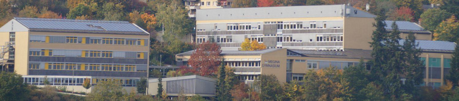 Ehemalige Schüler des Megina-Gymnasiums Mayen